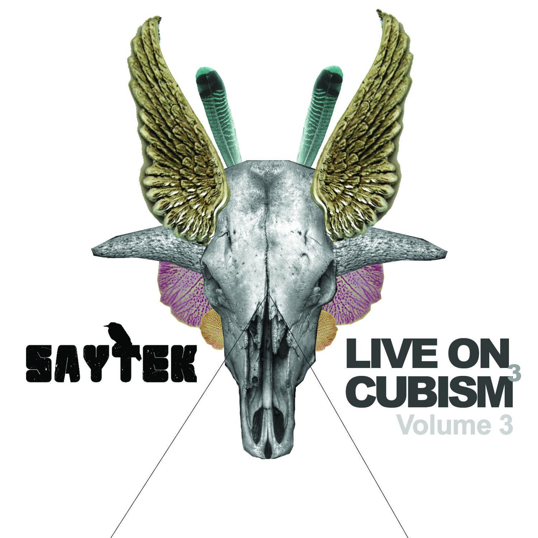 saytek-live-cubism-3-packshot.jpg