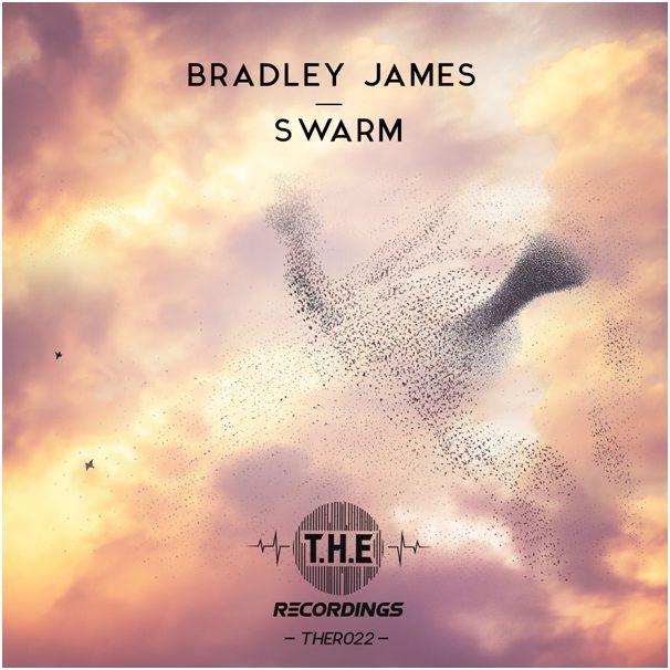 bradley_james_-_swarm.jpg