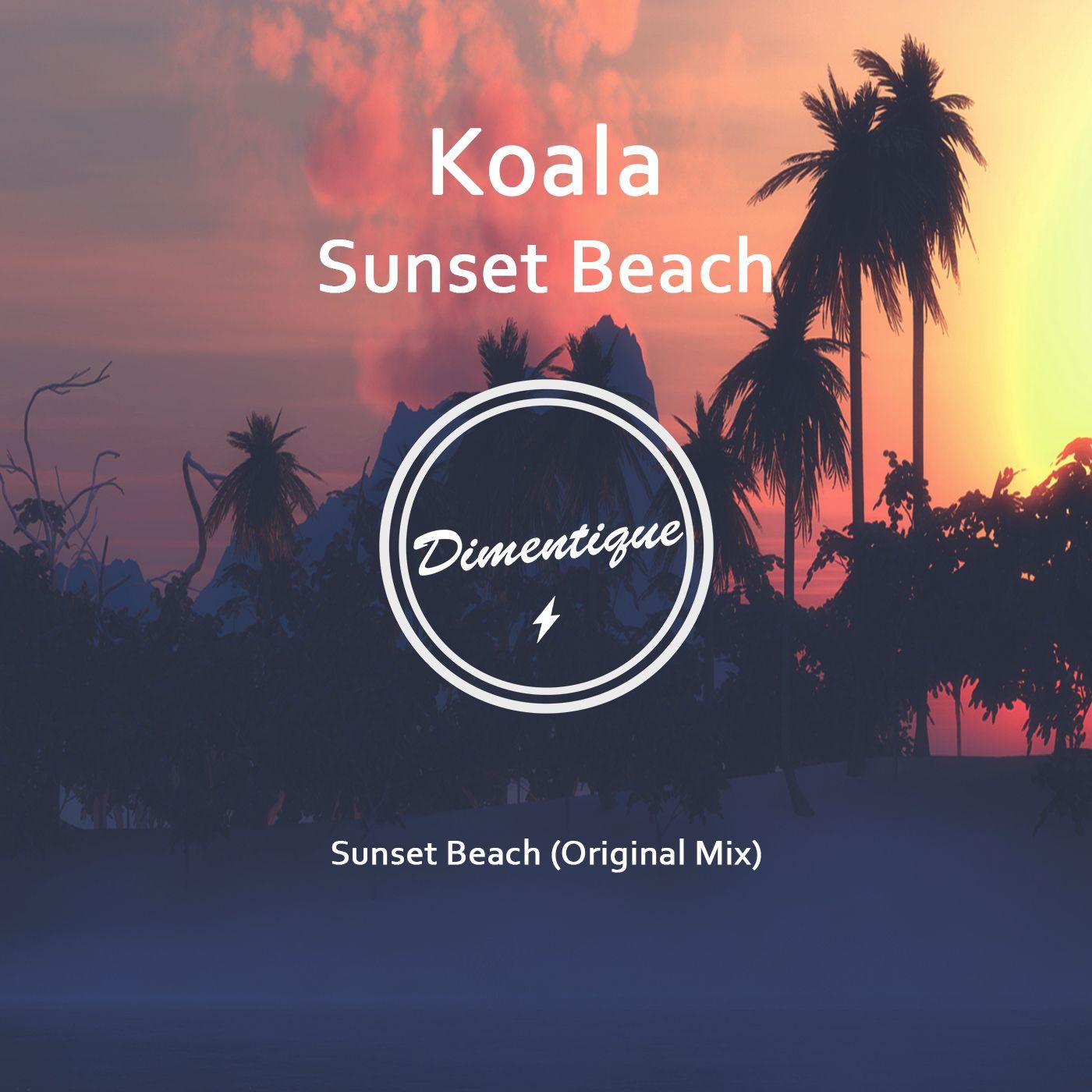 dimentique_new_art_2016_koala_-_sunset_beach.jpg