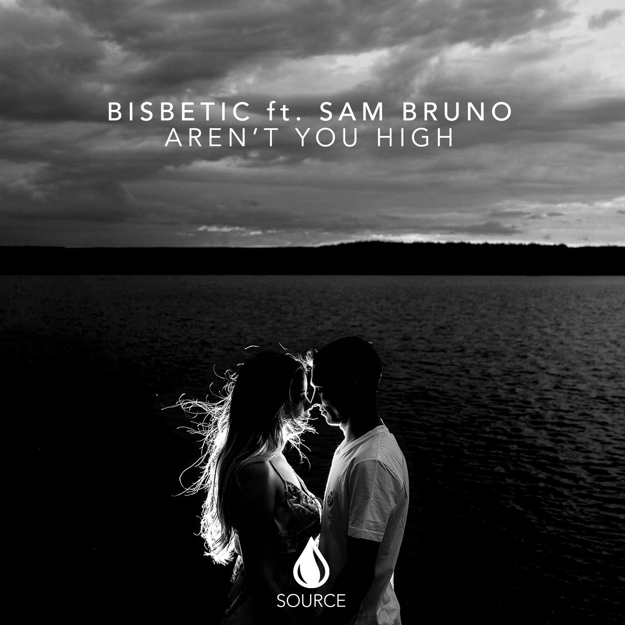 source_bisbetic_ft_sam_bruno_-_arent_you_high.jpg