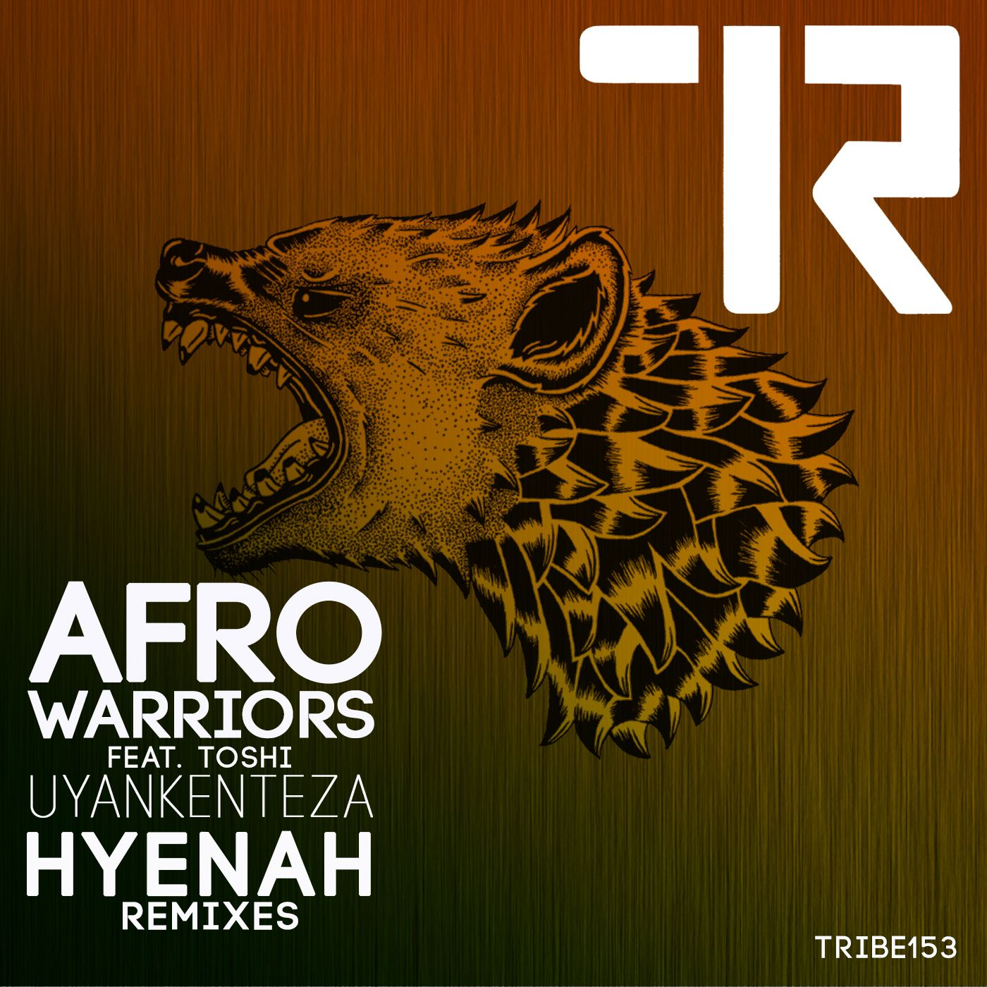 packshot_-_afro_warriors_153_remixes_cover.jpg