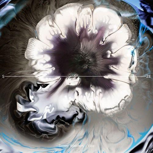 artworks-000224139643-6lb2nx-t500x500.jpeg