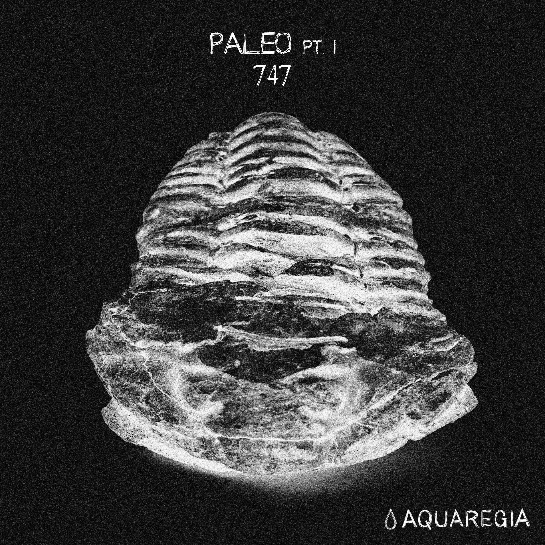 paleo-pt-1-album-art-final-final-web-100.jpg