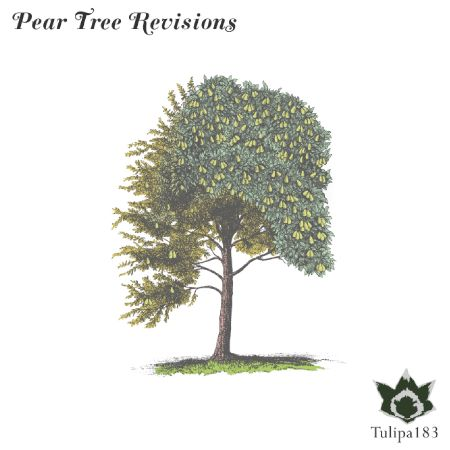 pear_tree_revisions_email.jpg
