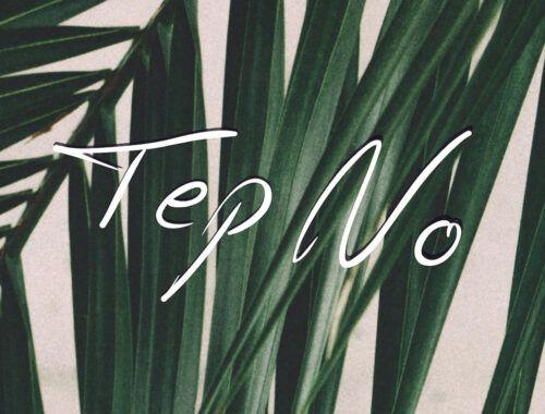 tep_no_-_toluca_lake_.jpg
