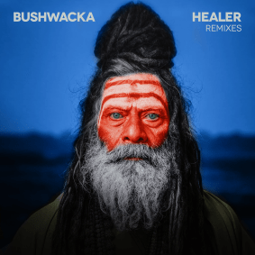 packshot_bushwacka_-_healer_remixes.png