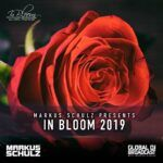 IN-BLOOM-COVER.jpg