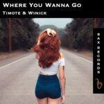 Cover-ArtworkTimote-Winick-Where-You-Wanna-Go-White.jpg